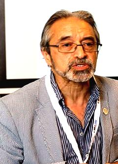 Professor Ali Hessami